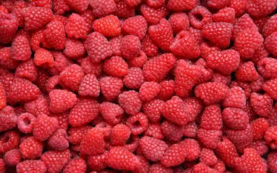 малина, ягоды, many, еда,