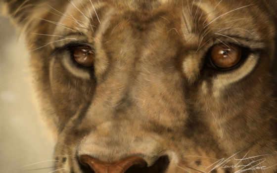 львица, lion, art