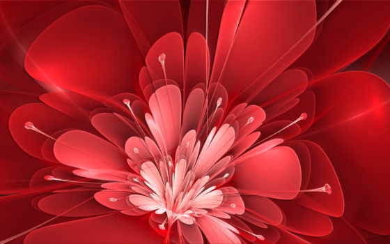 miscellaneous, flowers, red,