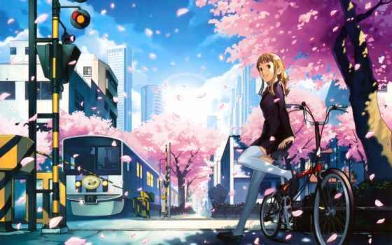 сантиметров, секунду, картинка, anime, пять, Сакура,