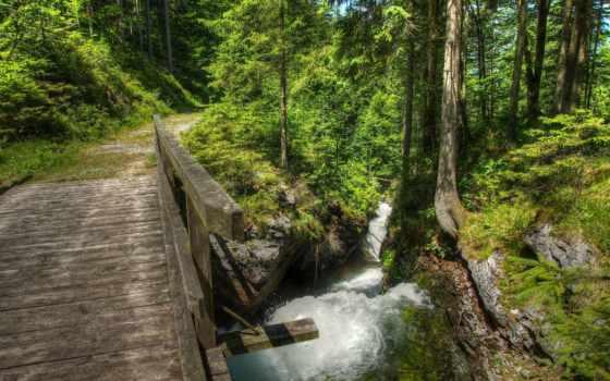июнь, мост, wooden, burtn, deviantart, landscape, лес,