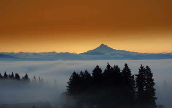 mount, капюшон, oregon, eastern, туман, лес, вечер,