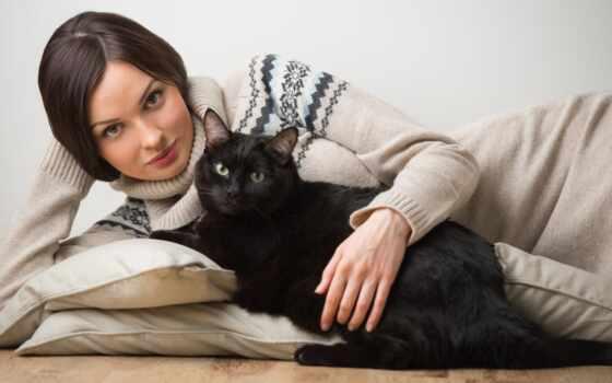 кот, женщина, animal, история, amazing, палуба
