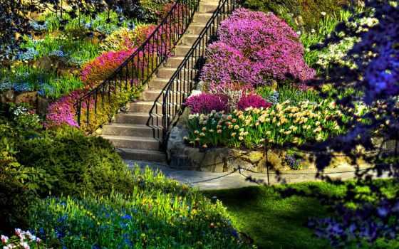 garden, world, сады