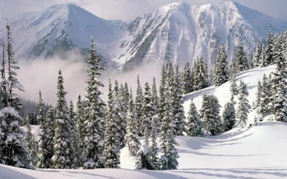 winter, есть, снег