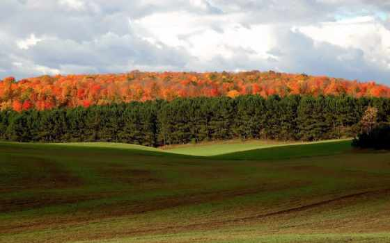 природа, красивые, бесплатные, полые, широкоформатные, ичиго, margin, газоны, пейзажи -,