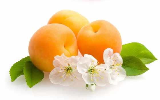 фрукты, листики, cvety, абрикосы, телефон, пожалуйста, скинали, объекты,