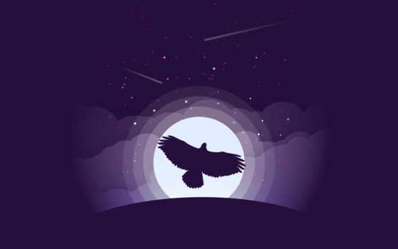 ,, пурпур,, небо,  темнота, атмосфера,  иллюстрация, графика, 4k resolution,