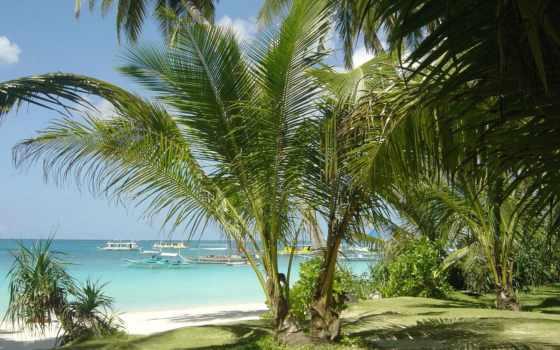 пляж, beaches, tropical, high, widescreen, funny, nha,