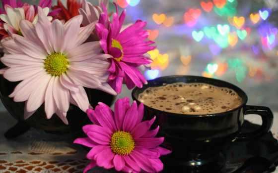утро, хороший, thursday, images, coffee, flowers, pinterest, цветы,