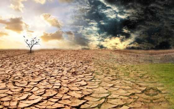 дерево, засуха, full, тучи, небо, дождь, agotamiento, recursos,