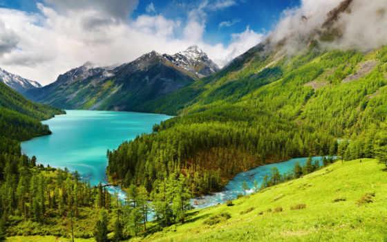 горы, trees, природа