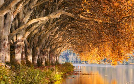 озеро, air, jaime, trees