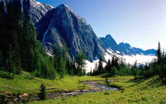 горы, природа, summer,