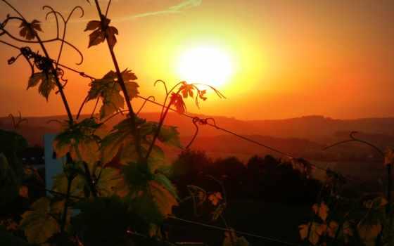 tejo, небо, montefalco, para, спорт, vineyard, вино,