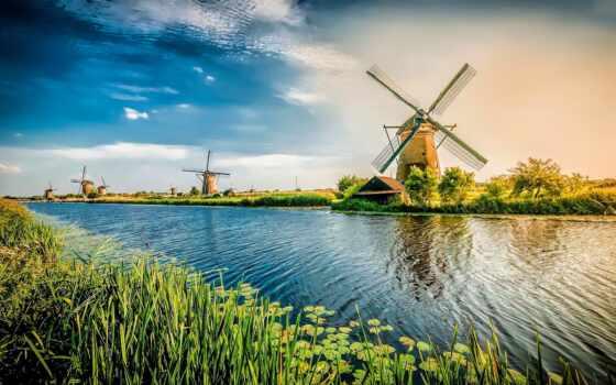 rook, holland, amsterdam, european, картинка, они, экскурсия