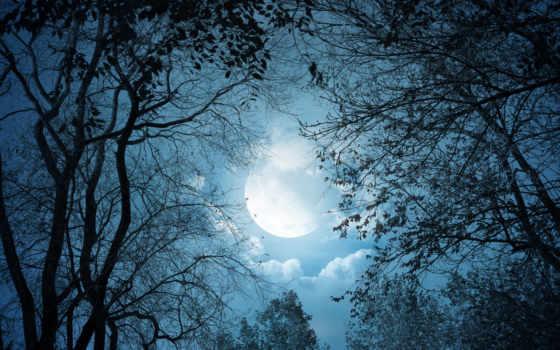 луна, night