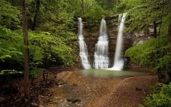 falls, водопад, лес