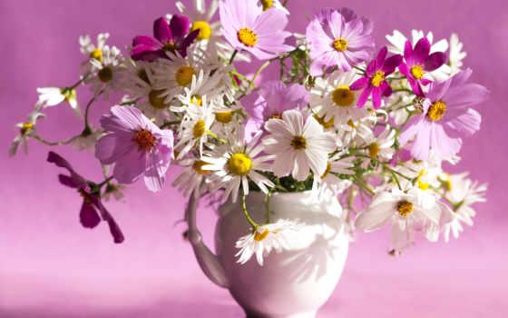 цветы, ваза, космея, букет, cosmos, модульную, изображение, картину, ромашки, flowers, композиций,
