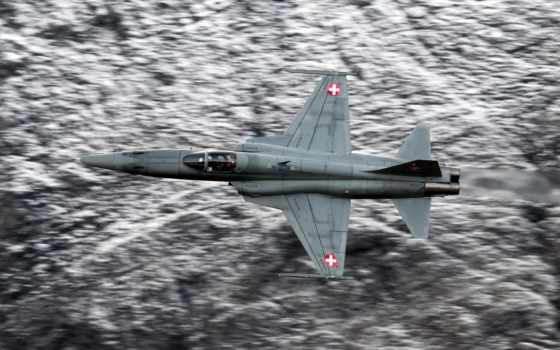 тигр, истребитель, northrop, airplane, самолеты, истребители, самолёт, flying, изображение,