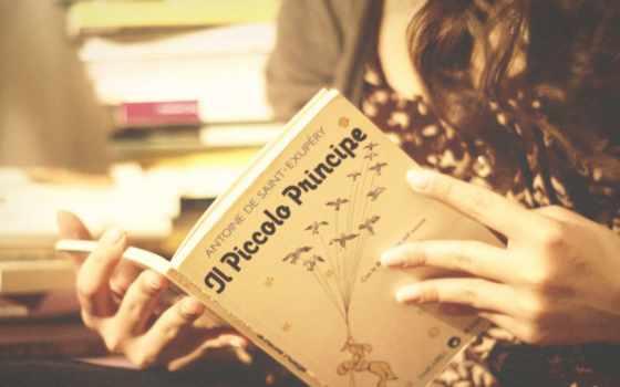 books, ди, су, девушка, pinterest, citazioni, visualizza, esplora,