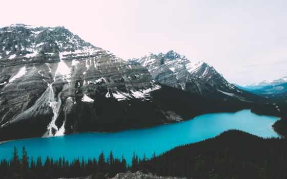 озеро, peyto, art, free,