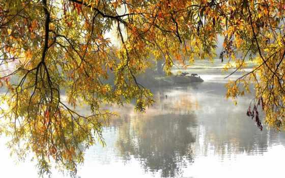 каждой, осенью, расцветаю, again, одноклассниках, осень, открытки,