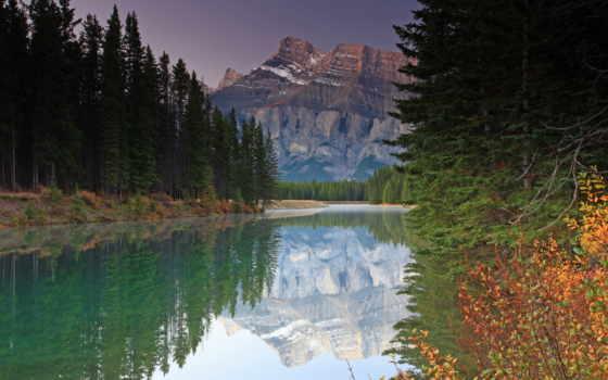 лес, pine, река, resolution, free, desktop,
