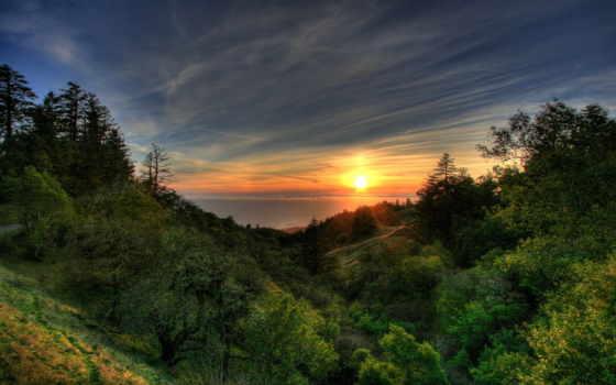 природа, закат, лес, one, разрешениях, разных, click, высококачествен,
