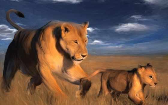 львица, красивые, zhivotnye, красивая, широкоформатные, шерсть, орлан, full, семья,