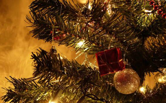 год, new, christmas Фон № 58781 разрешение 2560x1600