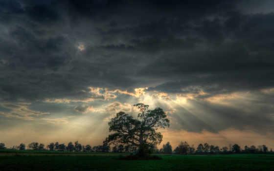 природа, буря, солнца, тучи, фоны, before, против, грозой, rays,