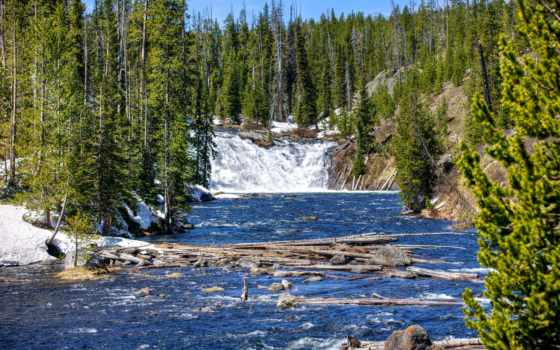 yellowstone, река, деревя, national, park, landscape, водопад, йеллоустонский, usa,