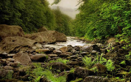 trees, трава, камни, природа, горы, children, река, женский, coollady, love,