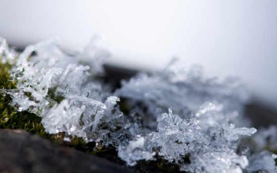 макро, снежинки, кристаллы, иней,