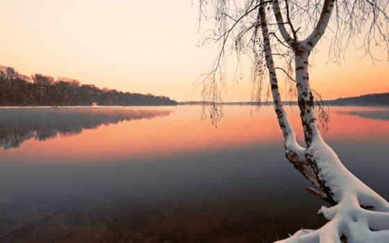 береза, manzara, озеро, дерево, winter, duvar, снег, тонах, imgator, landscape,
