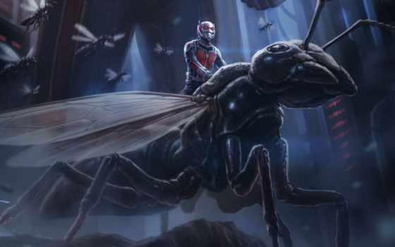 ant, мужчина, marvel, фильмы, кинотеатр, credits,