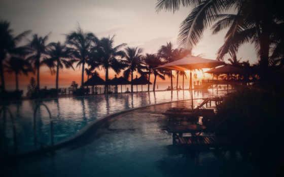 картинка, пальмы, пляж, нега, закат, море,