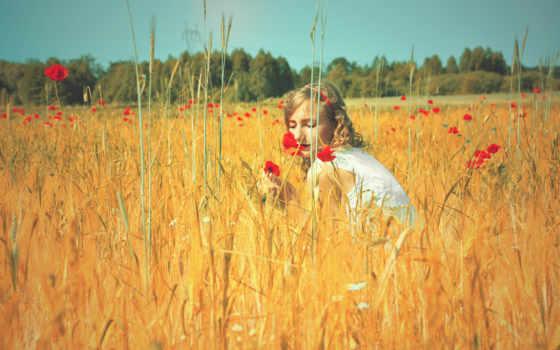 поле, девушка, маки, природа, summer, колосья, sun,