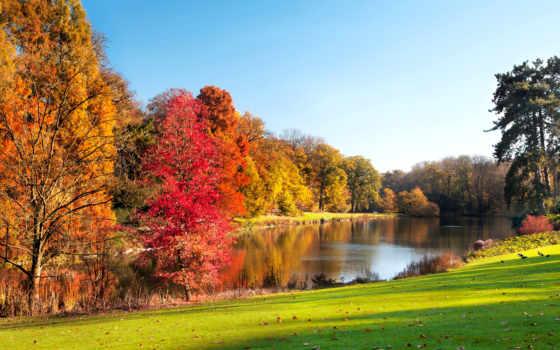 осень, landscape, park, озеро, осенние, trees, фотографий,