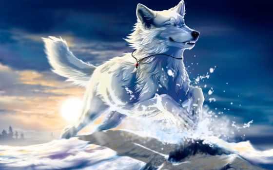 art, волк, wolfroad, снег, янв, fantasy, белый, клык, закат, можно, anime, прыжок, разделе, ты, free,