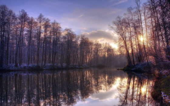 осень, закат, деревя