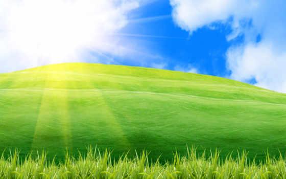 summer, природа, небо, palm, рассвет, заставки, пейзажи -, макро, осенние, лис, широкоэкранные,