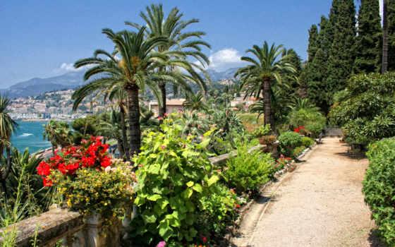 франция, пальмы, menton, trees, hotel, londres,