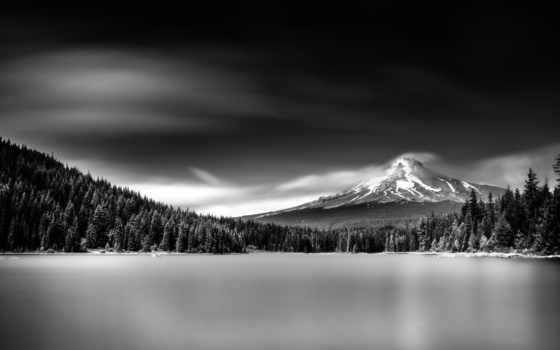 фотографий, white, black