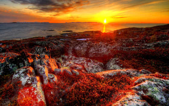 winter, landscape, природа, закат, снег, trees, норвегия, дерево,