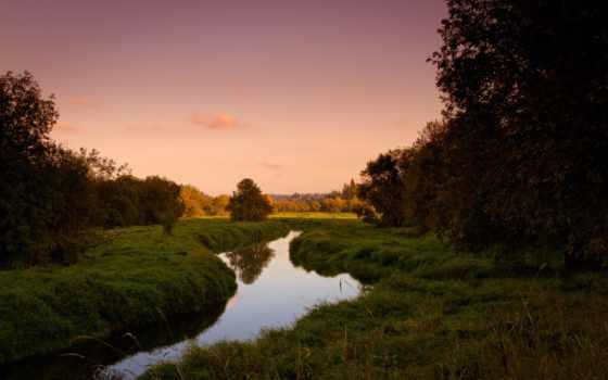 summer, вечер, природа, трава, trees, ручей, небо,