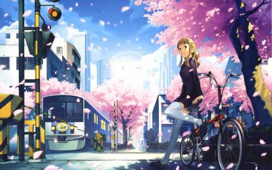 anime, сантиметров, секунду, девушка, Сакура, синкай, макото,