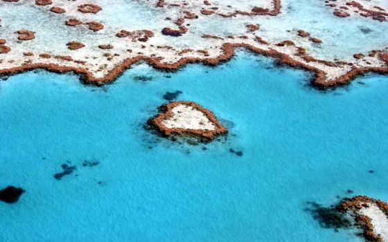 great, риф, шлагбаум, сердце, blue, rainy, drops,