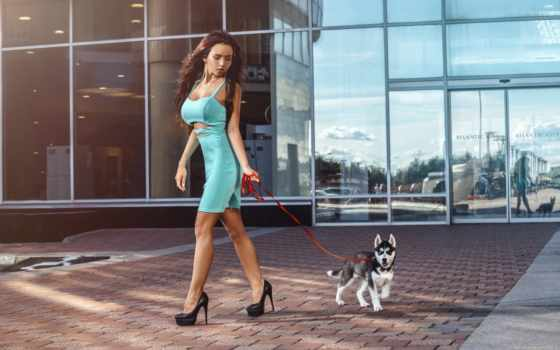 хаски, девушка, собака